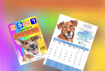 2021 Dogtown Calendar